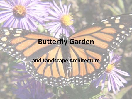 Butterfly Garden and Landscape Architecture. Projects like these are important The monarch butterfly is a perfect example of why. In the last few years,