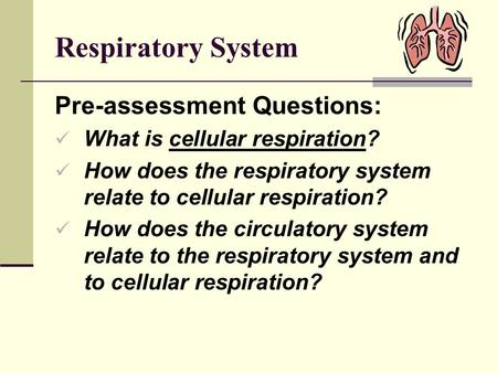 Respiratory System Pre-assessment Questions: What is cellular respiration? How does the respiratory system relate to cellular respiration? How does the.