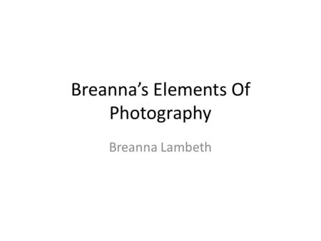 Breanna's Elements Of Photography Breanna Lambeth.