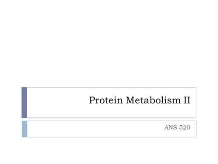 Protein Metabolism II ANS 520.