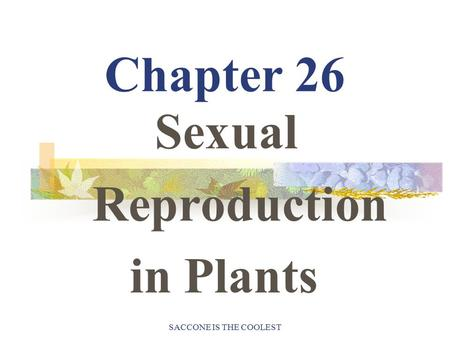 SACCONE IS THE COOLEST Chapter 26 Sexual Reproduction in Plants.