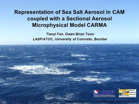 Representation of Sea Salt Aerosol in CAM coupled with a Sectional Aerosol Microphysical Model CARMA Tianyi Fan, Owen Brian Toon LASP/ATOC, University.