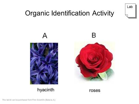 Organic Identification Activity hyacinth roses Lab This lab kit can be purchased from Flinn Scientific (Batavia, IL)