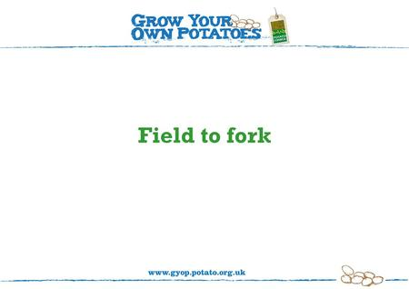 Field to fork. Let's look at how potatoes get from 'field to fork'