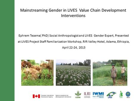 Mainstreaming Gender in LIVES Value Chain Development Interventions Ephrem Tesema( PhD) Social Anthropologist and LIVES Gender Expert, Presented at LIVES.