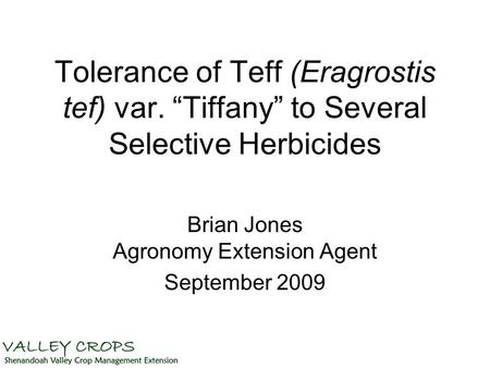 "Tolerance of Teff (Eragrostis tef) var. ""Tiffany"" to Several Selective Herbicides Brian Jones Agronomy Extension Agent September 2009."