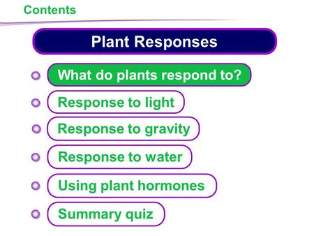 Plant Responses Response to light Response to water Response to gravity Contents What do plants respond to? Using plant hormones Summary quiz.