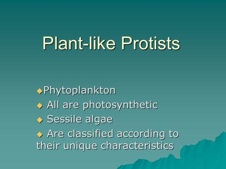 Plant-like Protists  Phytoplankton  All are photosynthetic  Sessile algae  Are classified according to their unique characteristics.