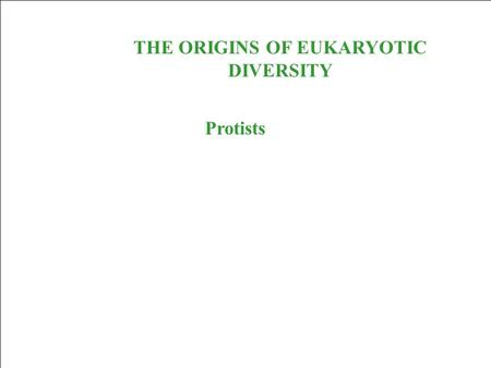 THE ORIGINS OF EUKARYOTIC DIVERSITY Protists. Protists are eukaryotes and thus are much more complex than the prokaryotes. The first eukaryotes were unicellular.