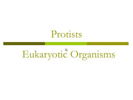 Protists Eukaryotic Organisms. Protists  Protists: Eukaryotic microorganisms in the Protist family.