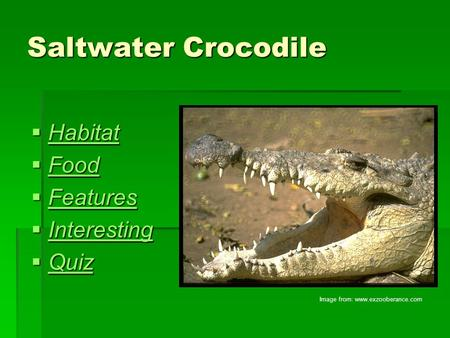 Saltwater Crocodile  Habitat Habitat  Food Food  Features Features  Interesting Interesting  Quiz Quiz Image from: www.exzooberance.com.
