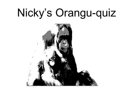 Nicky's Orangu-quiz Which one is a picture of an orangutan?