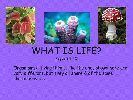 WHAT IS LIFE? Pages 34-40 Organisms: living things, like the ones shown here are very different, but they all share 6 of the same characteristics.