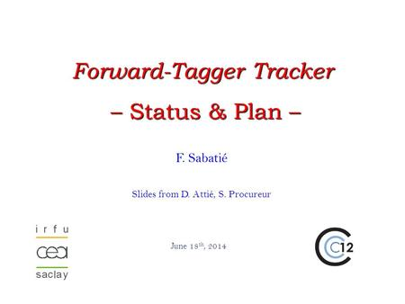F. Sabatié Slides from D. Attié, S. Procureur June 18 th, 2014 Forward-Tagger Tracker – Status & Plan – – Status & Plan –