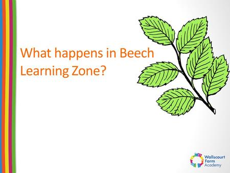 What happens in Beech Learning Zone?. Morning Rituals and Routines Transition between home and school Self-registration Children being independent – adults.