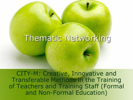 Thematic Networking CITY-M: Creative, Innovative and Transferable Methods in the Training of Teachers and Training Staff (Formal and Non-Formal Education)