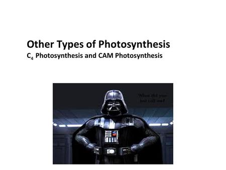 Other Types of Photosynthesis C 4 Photosynthesis and CAM Photosynthesis.