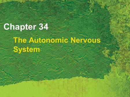 Chapter 34 The Autonomic Nervous System. Copyright 2007 Thomson Delmar Learning, a division of Thomson Learning Inc. All rights reserved. 34 - 2 Autonomic.
