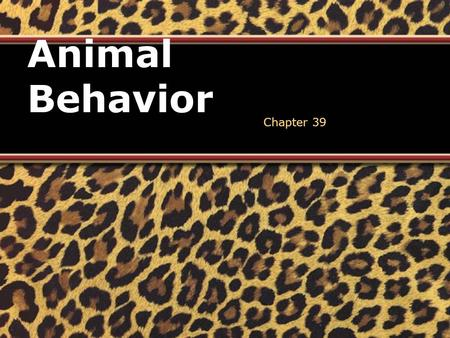 Animal Behavior Chapter 39. Behavior (Ethology) Action carried out by muscles or glands under control of the nervous system in response to a stimulus.