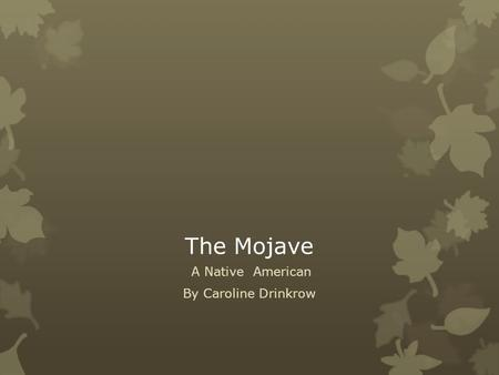 The Mojave A Native American By Caroline Drinkrow.