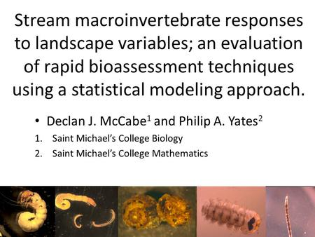 Stream macroinvertebrate responses to landscape variables; an evaluation of rapid bioassessment techniques using a statistical modeling approach. Declan.