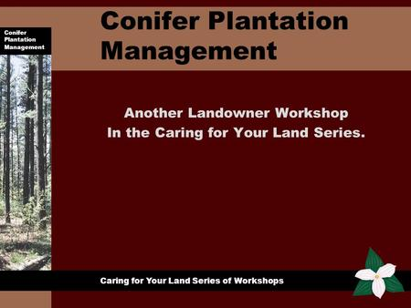 Conifer Plantation Management Caring for Your Land Series of Workshops Conifer Plantation Management Another Landowner Workshop In the Caring for Your.