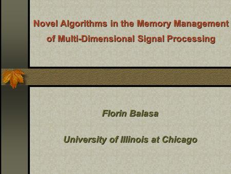 Novel Algorithms in the Memory Management of Multi-Dimensional Signal Processing Florin Balasa University of Illinois at Chicago.