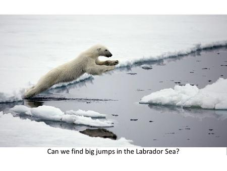 Abrupt changes in the Labrador Sea within CMIP5