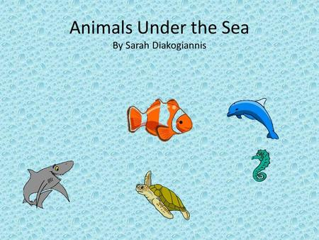 Animals Under the Sea By Sarah Diakogiannis. Matching Activity Directions: name each animal Shark Fish Dolphin Sea Horse Sea Turtle.