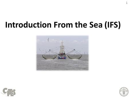 "1 Introduction From the Sea (IFS). 2 BACKGROUND This slide page is hidden from view in presentation mode. When printing, please make sure that the ""print."