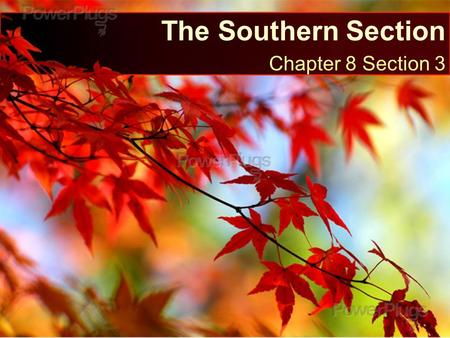 The Southern Section Chapter 8 Section 3.