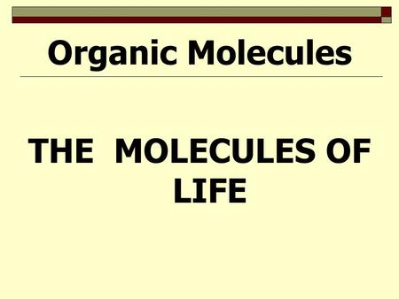 THE MOLECULES OF LIFE Organic Molecules ORGANIC MOLECULES  FOUR MAIN CATEGORIES : carbohydrates: fuel & building material lipids: fats & oils proteins: