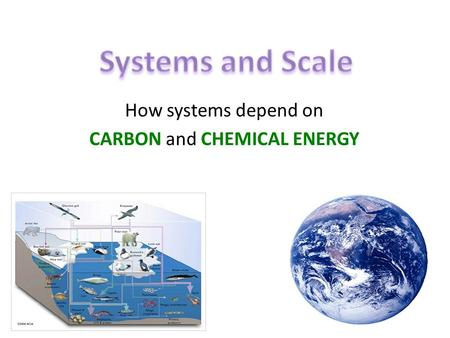 How systems depend on CARBON and CHEMICAL ENERGY.