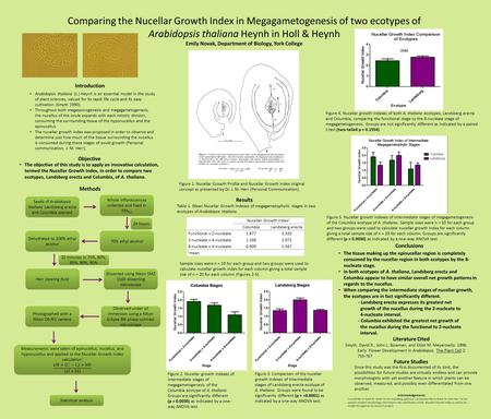 Comparing the Nucellar Growth Index in Megagametogenesis of two ecotypes of Arabidopsis thaliana Heynh in Holl & Heynh Emily Novak, Department of Biology,