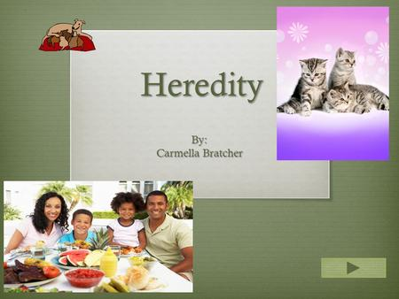 Heredity By: Carmella Bratcher.  Content Area: Science  Grade Level: 1st  Summary: Characteristics are passed on from one generation to the next. 