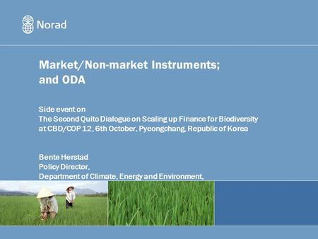 Market/Non-market Instruments; and ODA Side event on The Second Quito Dialogue on Scaling up Finance for Biodiversity at CBD/COP 12, 6th October, Pyeongchang,