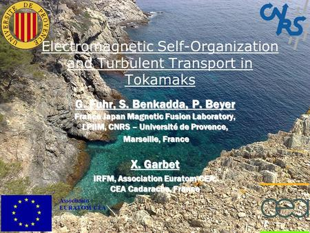 Association EURATOM-CEA Electromagnetic Self-Organization and Turbulent Transport in Tokamaks G. Fuhr, S. Benkadda, P. Beyer France Japan Magnetic Fusion.