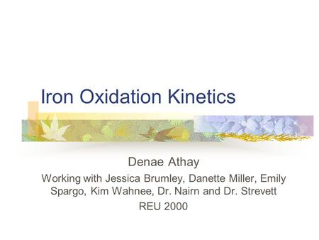 Iron Oxidation Kinetics Denae Athay Working with Jessica Brumley, Danette Miller, Emily Spargo, Kim Wahnee, Dr. Nairn and Dr. Strevett REU 2000.