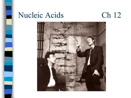 "Nucleic Acids Ch 12. Macromolecules n Macromolecules –""giant molecules"" –Formed when monomers join together to form polymers Monomer = molecules, sm."