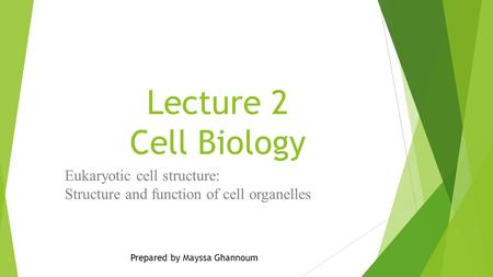 Lecture 2 Cell Biology Eukaryotic cell structure: Structure and function of cell organelles Prepared by Mayssa Ghannoum.