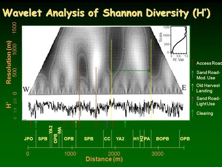 Wavelet Analysis of Shannon Diversity (H') 1500 Old Harvest Landing Sand Road- Mod. Use Sand Road- Light Use Clearing Access Road 0 1000 500 Resolution.