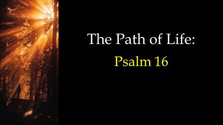 The Path of Life: Psalm 16. (Miller Standard Version - which combines NKJV, The Message and NLT) Preserve me, O God, for in You I put my trust. O my soul,