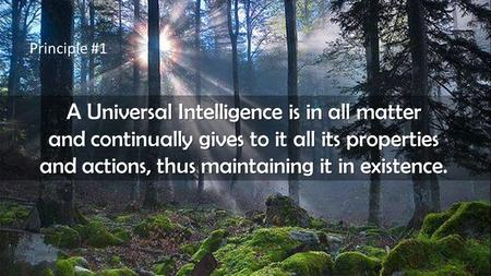 Principle #1 A Universal Intelligence is in all matter and continually gives to it all its properties and actions, thus maintaining it in existence.