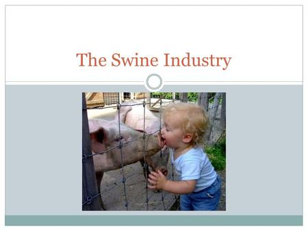 The Swine Industry. Objectives Understand importance of the swine industry Overview of the structure of the swine industry Become familiar with terms.