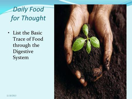11/18/20151 Daily Food for Thought List the Basic Trace of Food through the Digestive System.