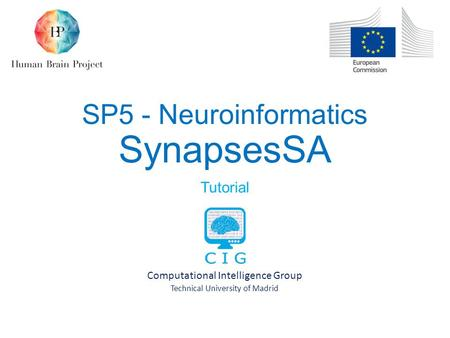 SP5 - Neuroinformatics SynapsesSA Tutorial Computational Intelligence Group Technical University of Madrid.