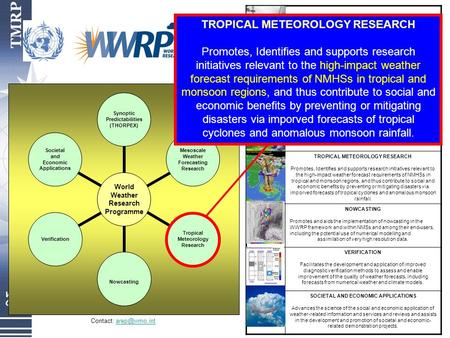 World Weather Research Programme Synoptic Predictabilities (THORPEX) Mesoscale Weather Forecasting Research Tropical Meteorology Research Nowcasting Verification.