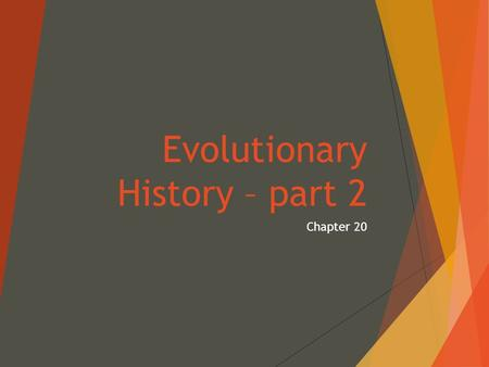 Evolutionary History – part 2 Chapter 20. History of Life  Fossils:  Any record of past life  Hard body parts: shells, bones, teeth  Traces or impressions: