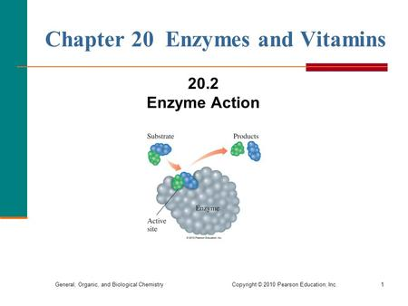 General, Organic, and Biological Chemistry Copyright © 2010 Pearson Education, Inc.1 Chapter 20 Enzymes and Vitamins 20.2 Enzyme Action.