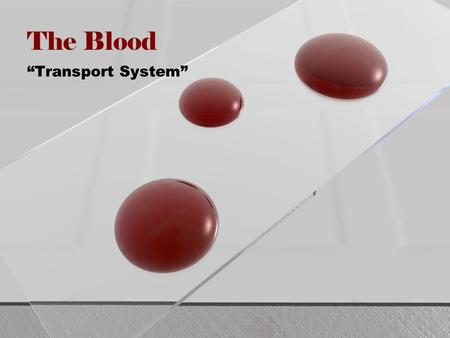 "The Blood ""Transport System"". Composition of the Blood Blood makes up ~8% of total body weight ~55% plasma ~45% formed elements 4 to 5 liters for average."